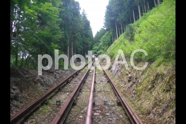 トロッコの線路.jpg