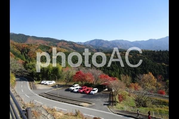 展望台からの眺め 紅葉.jpg