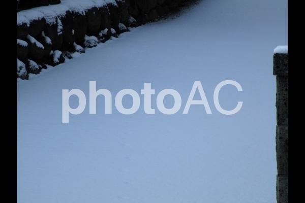 新雪.jpg