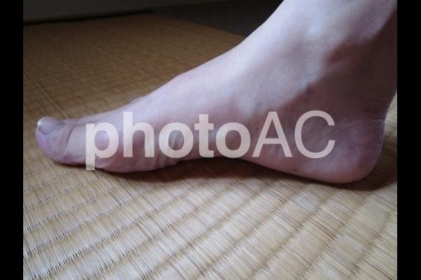 足のアーチ.jpg