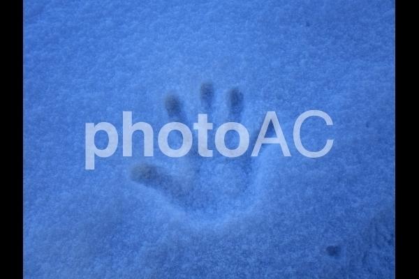 雪の手形.jpg