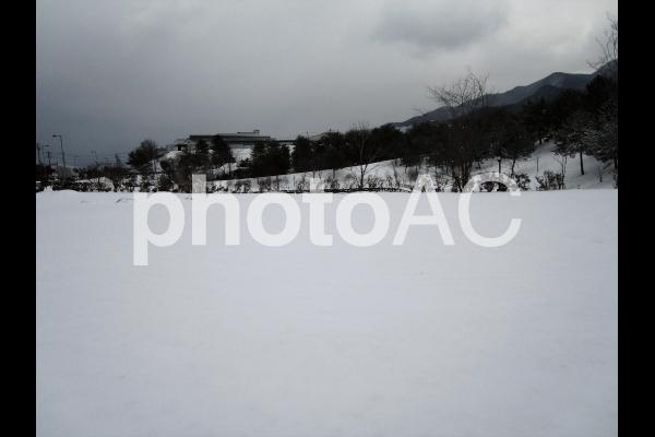 雪空き地.jpg